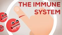 Give Your Immune System A Boost This Season