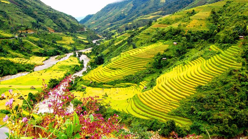 8 Days Vietnam Tour With Viet Bamboo Travel